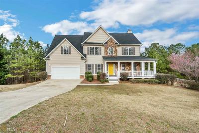Hiram Single Family Home New: 290 Glenn Eagles View