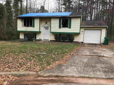 Stone Mountain Single Family Home New: 4834 Oak Path