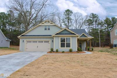 Villa Rica Single Family Home New: 570 Susie Creek Ln