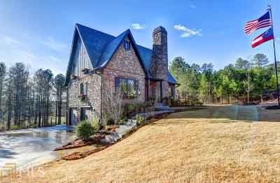 Dawson County Single Family Home For Sale: 84 Trout Shoals Rd
