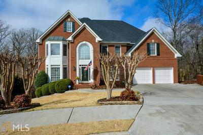 Peachtree Corners Single Family Home New: 4204 Ancient Amber Way