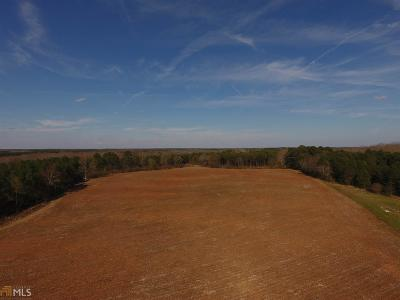 Newton County Commercial For Sale: 4393 Highway 213