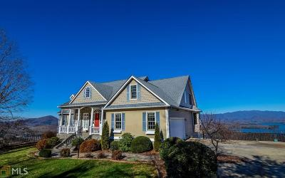 Hiawassee Single Family Home For Sale: 3153 Blue Ridge Trl