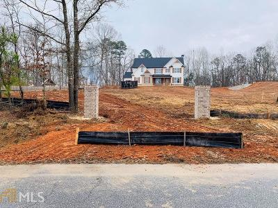 Braselton Single Family Home For Sale: 1383 Pocket Rd