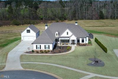 Newnan Single Family Home For Sale: 171 Kindelwood Dr