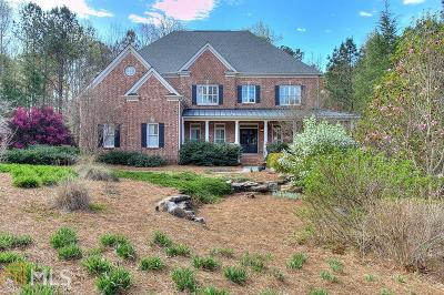 Stone Mountain Single Family Home For Sale: 2248 Ivey Creek Way
