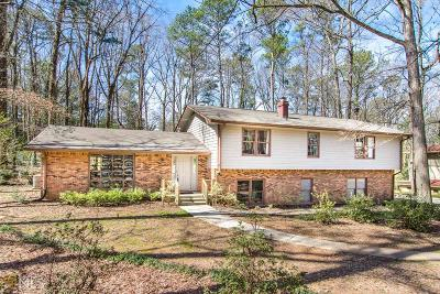 Stone Mountain Single Family Home For Sale: 1957 Gunstock Dr