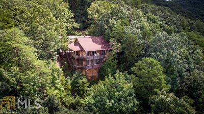 White County Single Family Home For Sale: 918 Yonah Mountain Rd