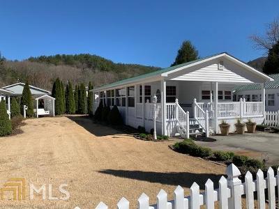 Hiawassee Single Family Home For Sale: 4321 Riverbank Run