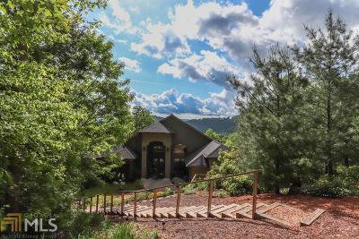 Blairsville Single Family Home For Sale: 55 Raintree Ln