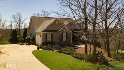 Lumpkin County Single Family Home Under Contract: 58 Hallmark Pl