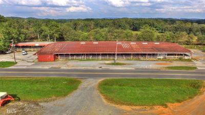 Canton, Woodstock, Cartersville, Alpharetta Commercial For Sale: 407 SE Burnt Hickory Rd