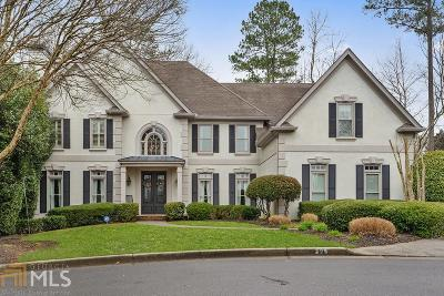 Roswell Single Family Home New: 295 Steeple Point Dr