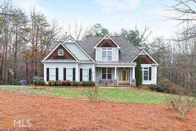Dawsonville Single Family Home For Sale: 74 Fern Park Dr