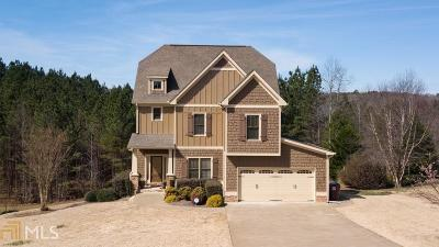 Lumpkin County Single Family Home New: 455 Morgan Ln