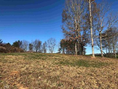 Blairsville Residential Lots & Land New: 168 Owen Glen Ln