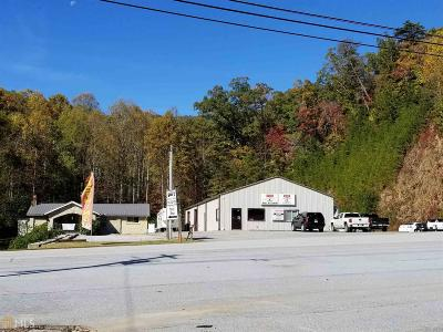 Rabun County Commercial New: 1183 Old Hwy 441 North