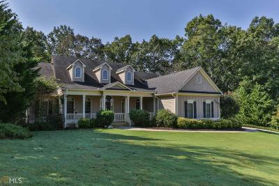 Ellijay Single Family Home New: 164 Oakland Ct