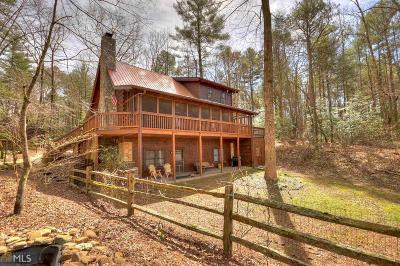 Ellijay Single Family Home For Sale: 142 Ballew Ln