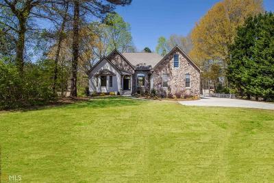Newnan Single Family Home For Sale: 646 Sullivan Rd
