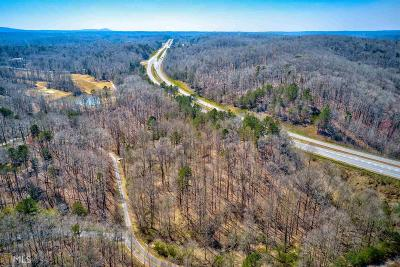 Dawson County Commercial For Sale: 246 Landrum Rd
