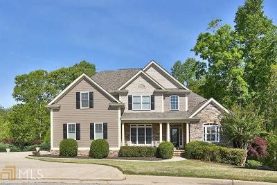 Dawsonville Single Family Home For Sale: 7380 Sawgrass Dr