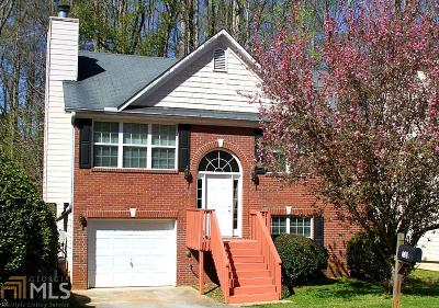 Stone Mountain Single Family Home For Sale: 732 Guide Post Ln
