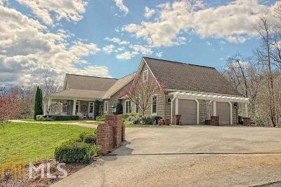 Hiawassee Single Family Home For Sale: 2169 Carlin Rd #13 &