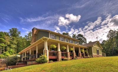 Ellijay Single Family Home For Sale: 8644 Chatsworth Hwy
