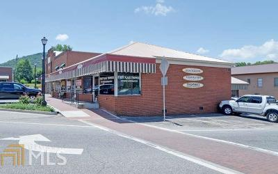 Union County Commercial For Sale: 32 Town Sq #A