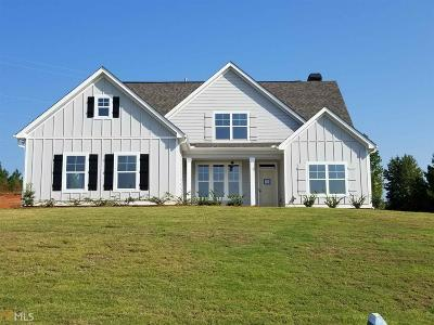 Newnan Single Family Home New: Elizabeth Ln #19