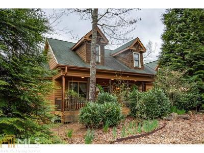 Ellijay Single Family Home New: 670 Dover Highlands Trl #21