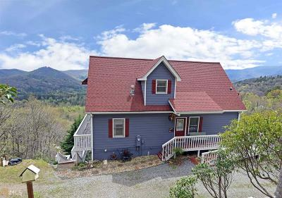 Hiawassee Single Family Home For Sale: 1900 Ivy Mountain Rd