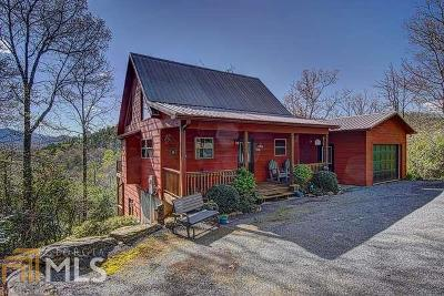 Hiawassee Single Family Home For Sale: 3116 Bearmeat Ridge