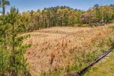 Paulding County Residential Lots & Land For Sale: 250 Terrace View Dr