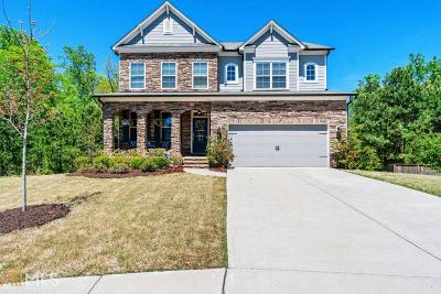Canton Single Family Home New: 520 Andes Ln