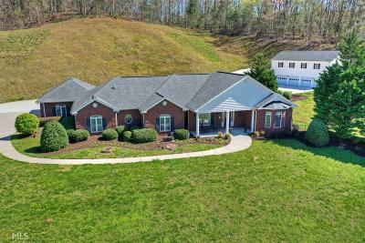 Ellijay Single Family Home For Sale: 2451 Boardtown Rd