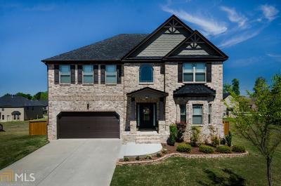 Gwinnett County Single Family Home New: 533 Besra Dr