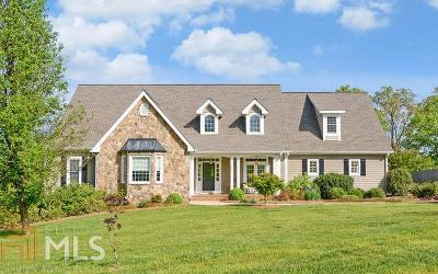 Habersham County Single Family Home For Sale: 169 Windy Ridge Dr