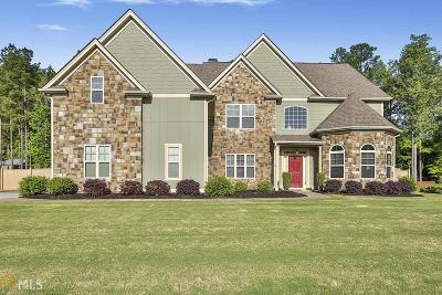 Newnan Single Family Home For Sale: 91 Sunny Brook Ter