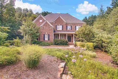 Stone Mountain Single Family Home For Sale: 2248 Ivey Creek Dr