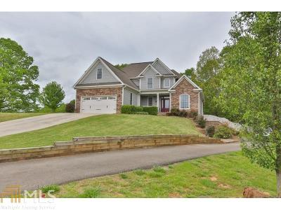 Gilmer County Single Family Home For Sale: 166 Oak Crest Dr