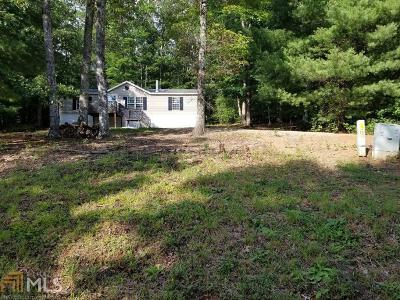Blairsville Single Family Home For Sale: 352 Fern Valley
