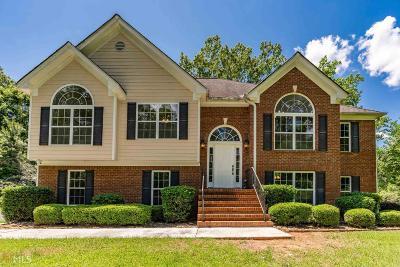 Putnam County Single Family Home For Sale: 175 Ellman Dr