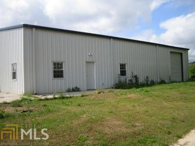 Elbert County, Franklin County, Hart County Single Family Home For Sale: 3785 Bowman Hwy