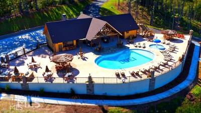 Blairsville Residential Lots & Land New: Thirteen Hundred #87