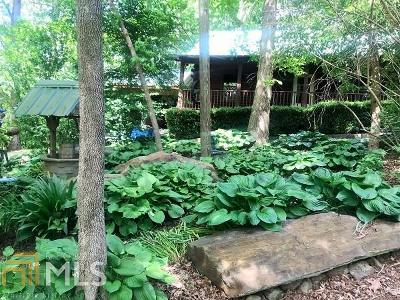 Ellijay Single Family Home For Sale: 3025 East Hwy 52
