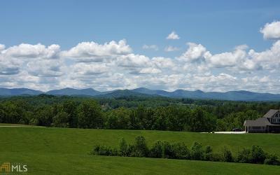 Blairsville Residential Lots & Land New: Fox Lake #76 &