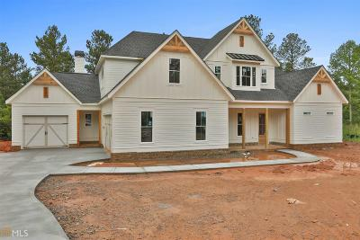 Coweta County Single Family Home For Sale: Water Stone Dr
