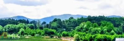 Blairsville Residential Lots & Land New: 53 Porch View Cir